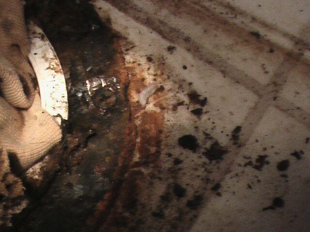 Rusted toilet flange on PVC pipe-toilet-2.jpg