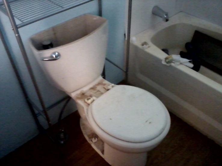 Complete Mobile Home Remodel-toilet.jpg