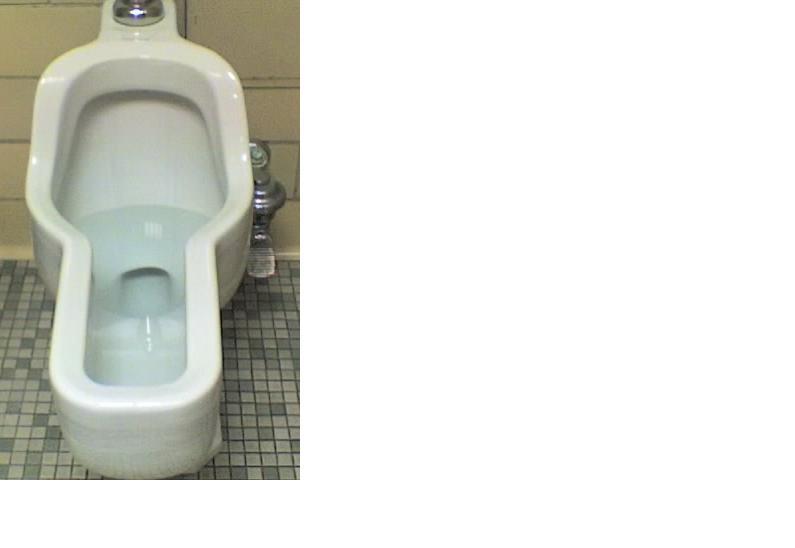 Unisex Urinal?-toilet2.jpg