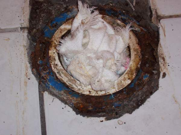 How To Remove Old Rusted Toilet Flange Help With Old Rusted Cast ...