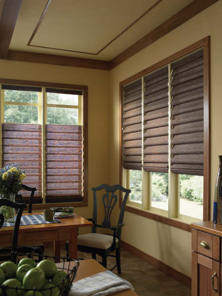 Privacy Window Treatment For LOWER 1/2 Of Window - Interior Decorating ...
