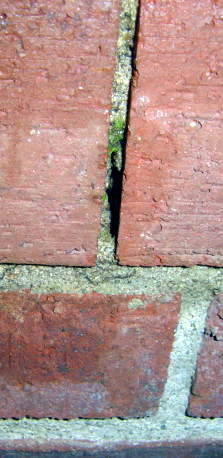 20 year old Brick Wall Repair-top_row-vertical-side.jpg