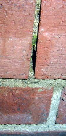 20 year old Brick Wall Repair-top_row-vertical-side.jpg