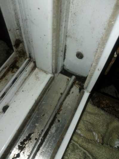 How to approach a wood rotted sub floor and frame under a sliding glass door-track.jpg