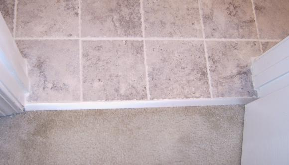 Threshold Between Tile And Vinyl Transition Jpg