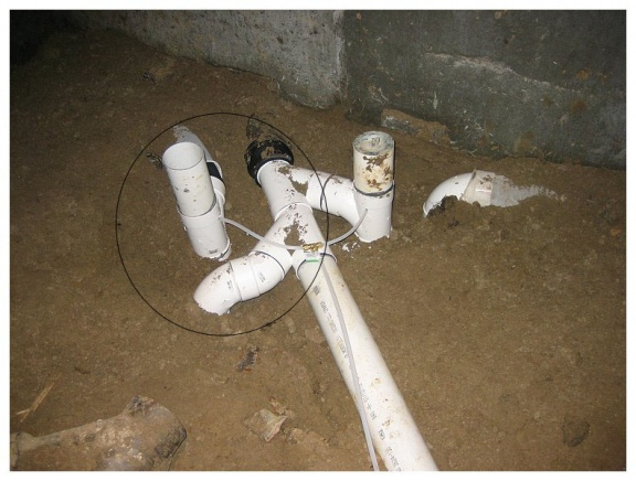 Basement drain P-Trap collecting waste?-trap1.jpg