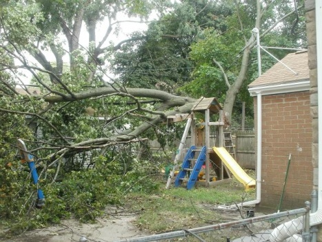 Ordinarily, we don't use the service entrance wire to try to hold up a tree...-tree-down-04sep2011.jpg
