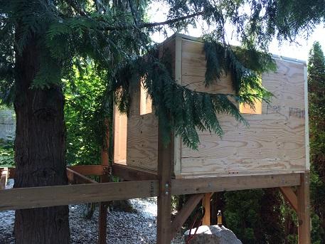 Treehouse-treehouse08.jpg
