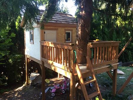 Treehouse-treehouse12.jpg