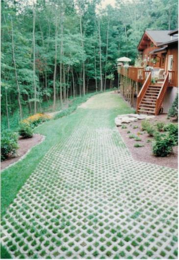 lawn/driveway-turfpaver_1.jpg