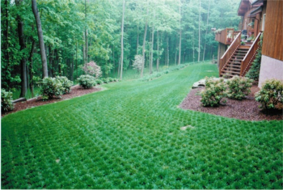 lawn/driveway-turfpavers_2.jpg