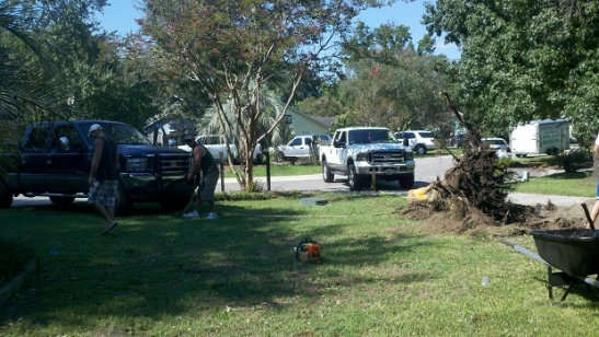 removing a tree stump-two-trucks.jpg