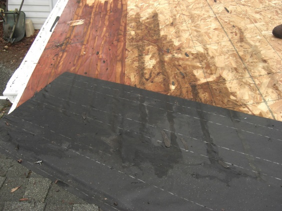 which roof plane drains the highest volume of water?-unclipped-shingle-damage.jpg