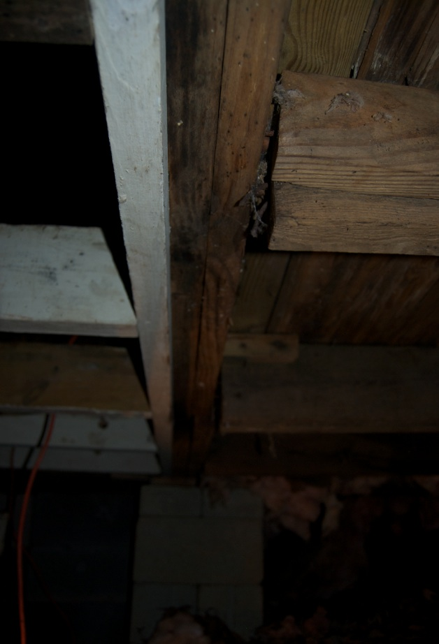 Bubba's been here. Repairing sagging rim/floor joists.-underbelly.jpg