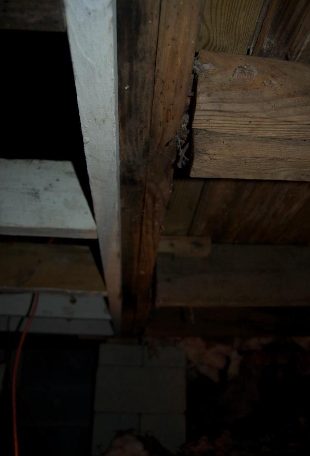 Bubba's been here. Repairing sagging rim/floor joists.-underbelly.jpg