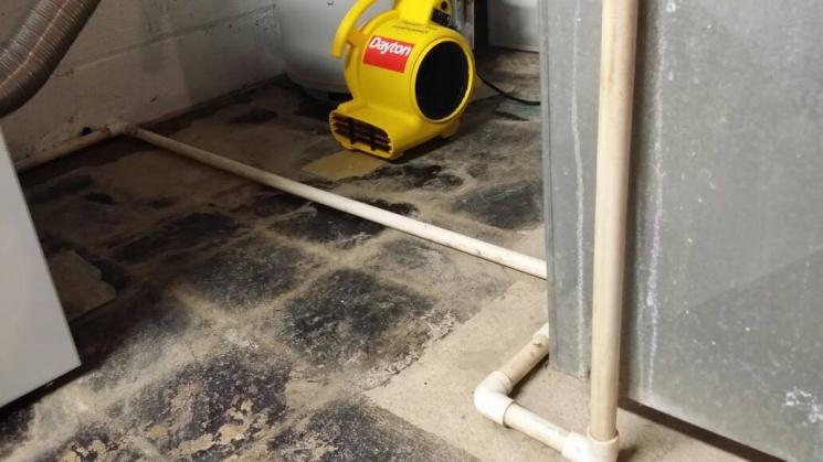 Basement Water Problem-uploadfromtaptalk1400471220700.jpg