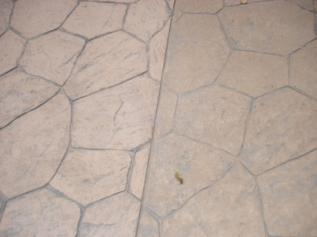 Concrete Does not Match-walkway-004.jpg