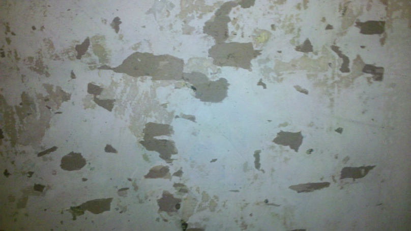 Painting over wallpaper - no other option - How to proceed-wall.jpg