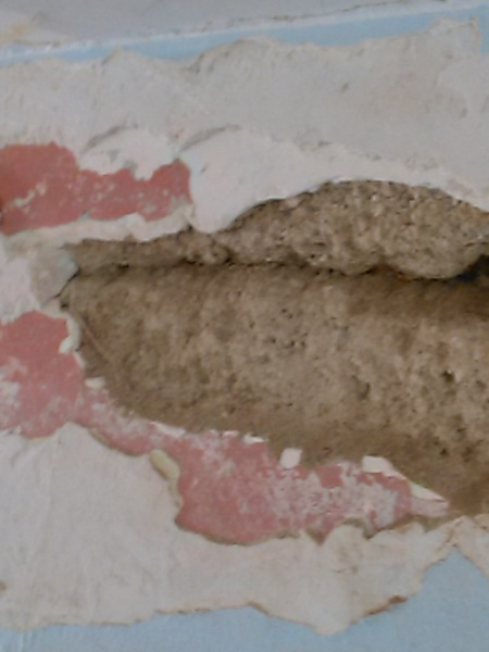1950s House Water Damage To Plaster Drywall Diy