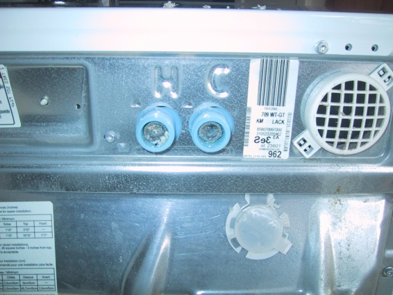 off-white debris on the washer inlet screens-washer-inlet-screen.jpg