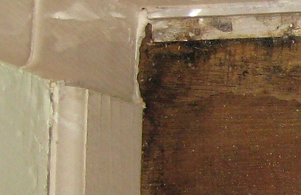 Wet Subfloor--Clean or Replace?-water_damage_floor_2.jpg