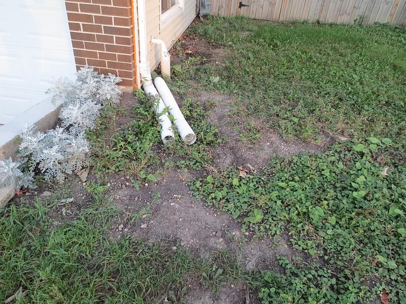 Killing vegetation for a clean grass slate-weeds.jpg