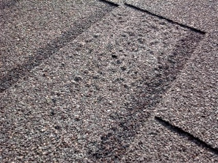 Problems With Atlas Shingles Wilson