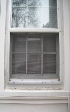 Window Replacement and Trim-window.jpg