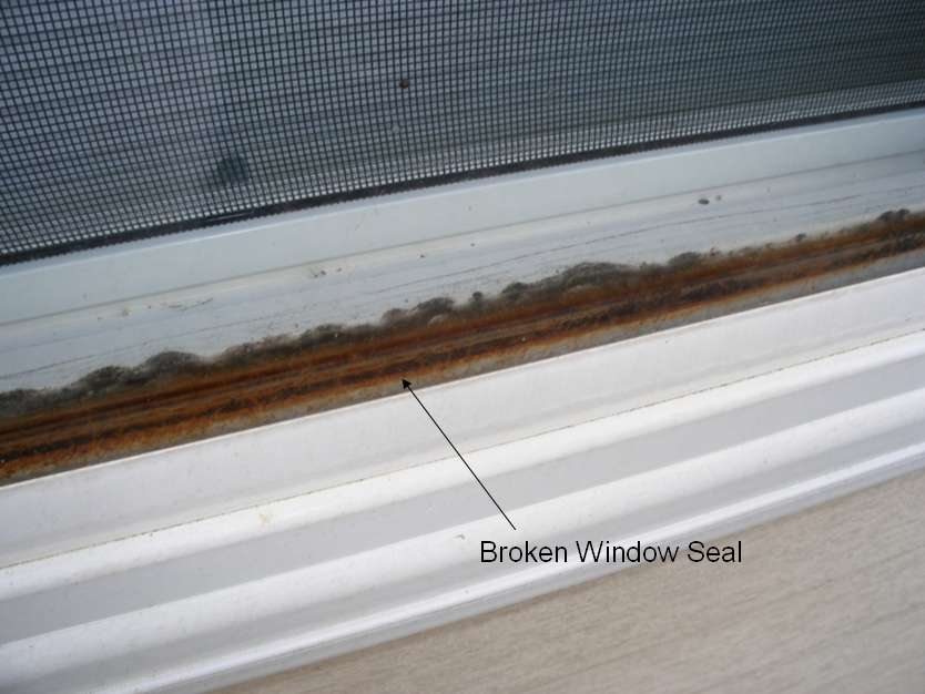 Replacement Window - Nail Fin Question-window-seal.jpg