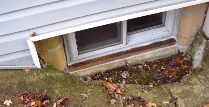 Basement window problem-window-well1.jpg