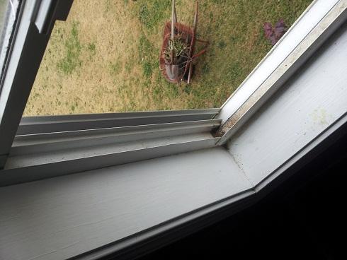 Window replacement question-window1.jpg