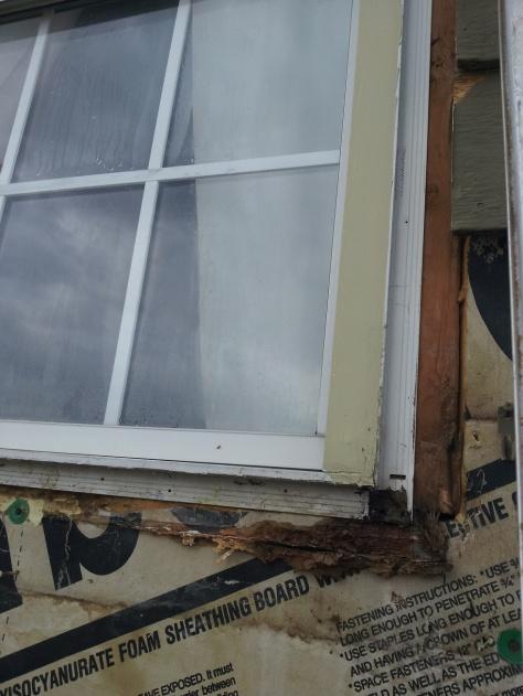 Window replacement question-window3.jpg