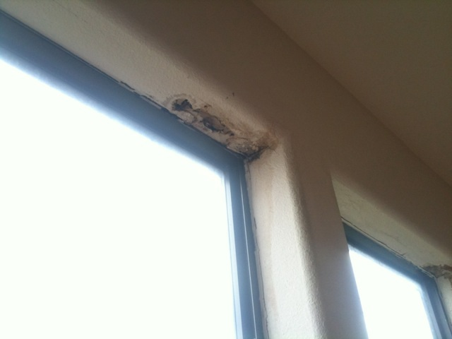 Water Seepage Damaging Window Corner-windowdamage2.jpg