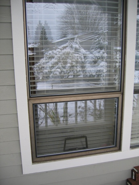 Vinyl Window Replacement-windows-002.jpg