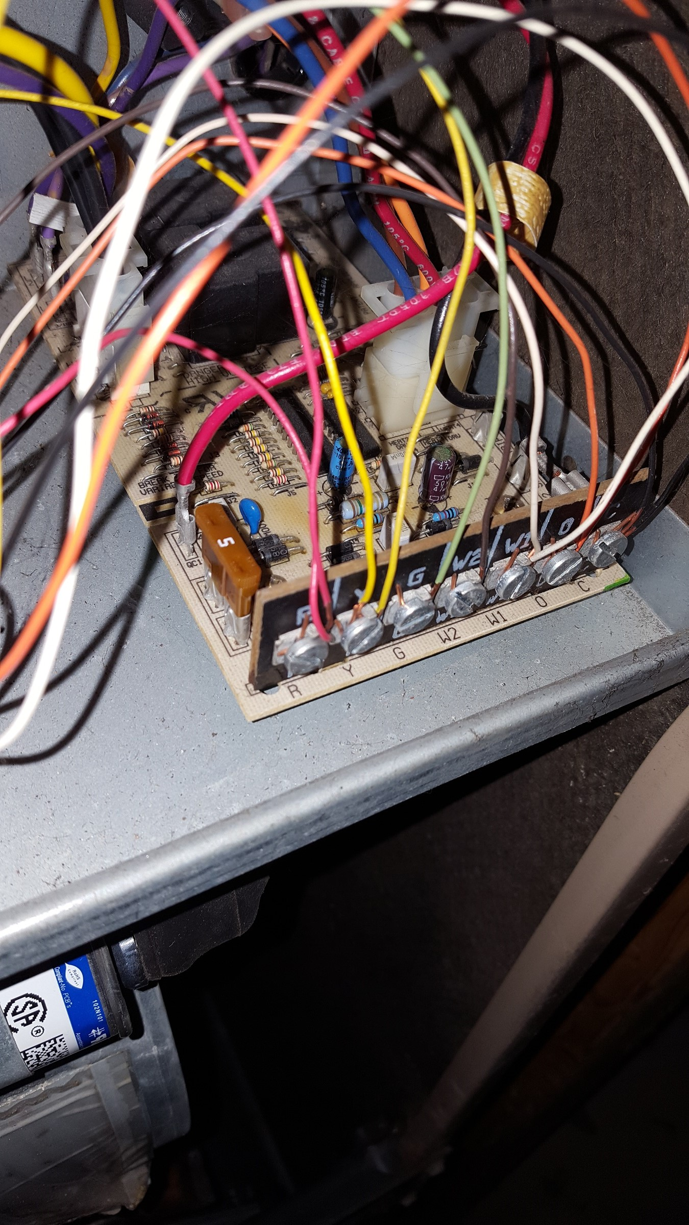 York HVAC blowing 5 amp fuse. Looking for some help please-worrydice-hvac-board.jpg