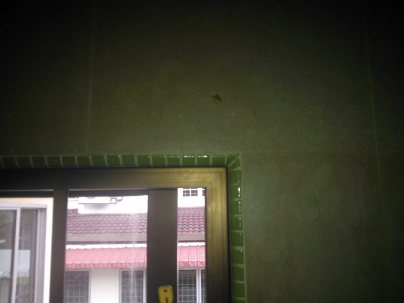 Installing Curtain Rod Without Drilling Wp 003183 Jpg