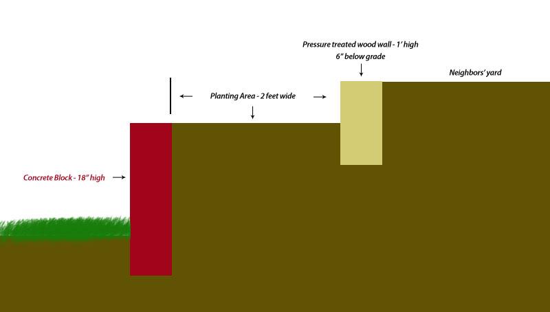 Planting Emerald Green Arborvitaes-xsec.jpg