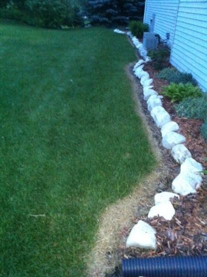 best way to remove yellow grass around edging?-yard.jpg