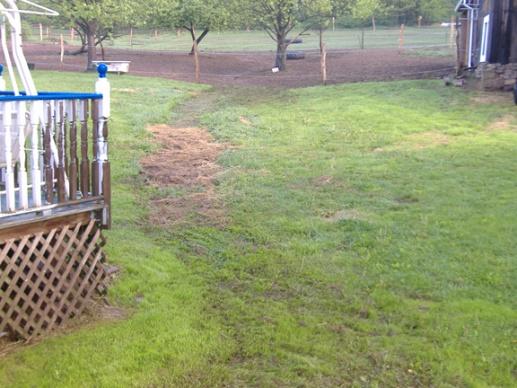 Hard rain creek runs through yard. HELP-yard1.jpg