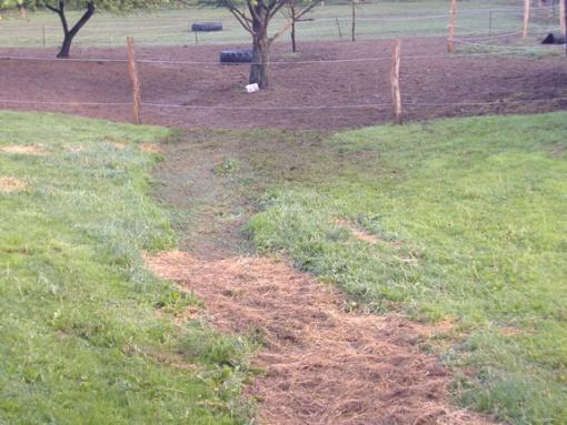 Hard rain creek runs through yard. HELP-yard2.jpg