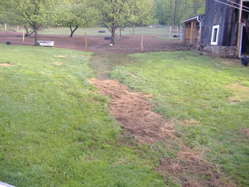 Hard rain creek runs through yard. HELP-yard3.jpg