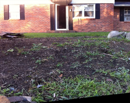 Sump Pump in Patio / Yard Drains-yardditch4.jpg