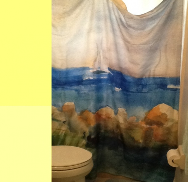 Ideas to match shower curtain-yellow.jpg