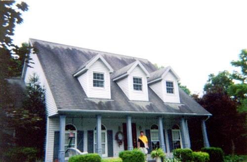 Cleaning roof ?-zincstrip01b.jpg