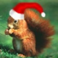 Red Squirrel's Avatar