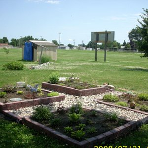 Perenial garden veiw #1
