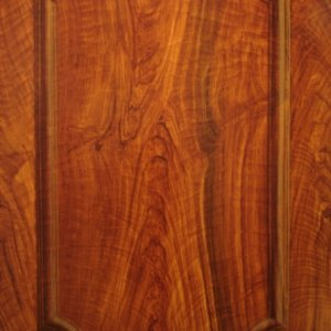Another trompe loeil panel only this is paint walnut to look like a raised molding as well  http://www.art-faux.com