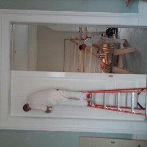 11.6 ft doors (foreman chris)