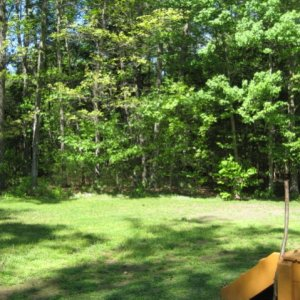 back yard boarders the woods on two sides. ...many trails and a river beyond
