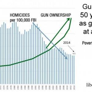 gun ownership homicides